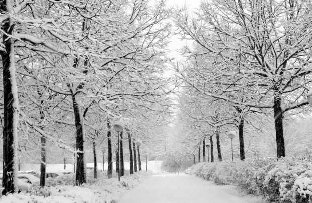 winter[1]